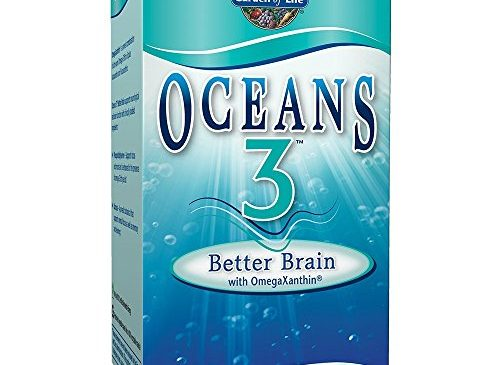 Garden of Life Ultra Pure EPA/DHA Omega 3 Fish Oil – Oceans 3 Better Brain Supplement with Antioxidants, 90 Softgels